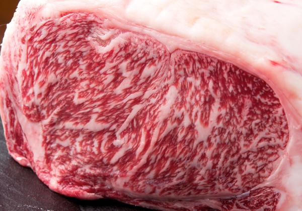 お肉イメージ
